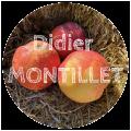 Didier Montillet