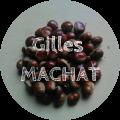 Gilles MACHAT