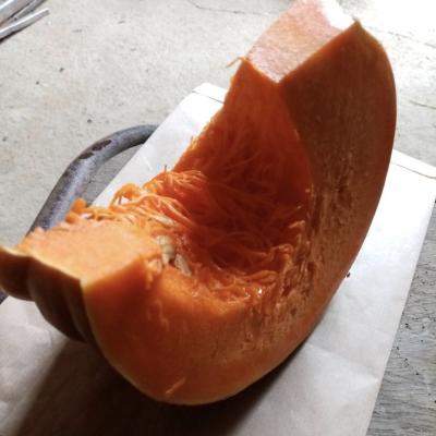 Morceau de Potiron (env 1kg)