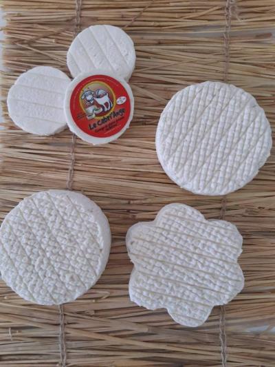 Lot de 6 fromages de chèvre (1 fleur, 1 palet, 1 rondo, 3 cabécous)